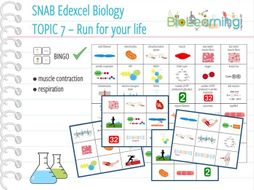 SNAB Biology Topic 7: Run for your life - Bingo Cards