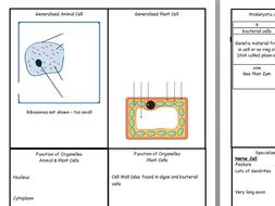 Revision flashcards for new AQA GCSE Biology (9-1( CELLS