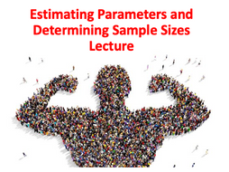Estimating Parameters and Determining Sample Sizes Lecture (Elementary Statistics Module)