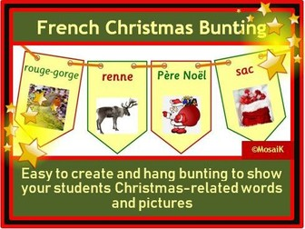 French: 20 flags for Christmas bunting