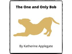 The One and Only Bob - (Reed Novel Studies)