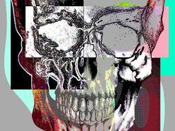 Photoshop step by step Warhol Skull