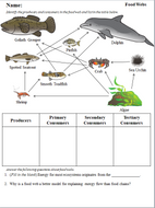Food-webs-and-ecological-pyramid-worksheets.pdf