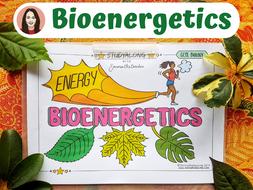GCSE Biology Bioenergetics Revision Workbook
