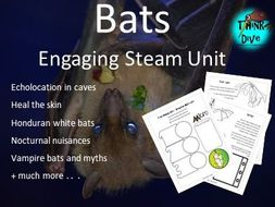 Project based learning: Bats - STEAM, Biomimicry - US