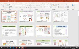 Organisation-of-the-Nervous-system-.pptx
