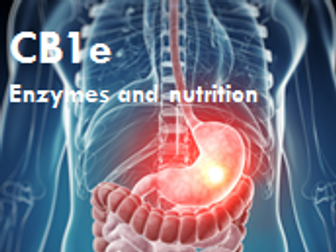 CB1e Edexcel 9-1: Digestive enzyme (higher lesson)