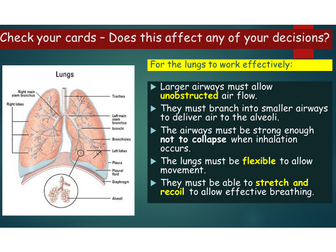 OCR A level Biology (H020) Module 3 - Tissues in the gaseous exchange system.