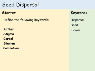 KS3 Plants - Lesson 5 - Seed Dispersal