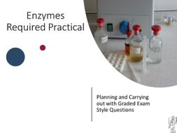 Enzymes Required Practical Lesson