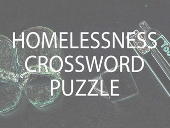 Homelessness Crossword Puzzle and Lesson (US)