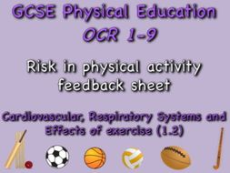 GCSE OCR PE (1.2) Physical Training  - Risk in physical activity feedback sheet