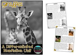 Differentiated Nonfiction Unit: Giraffes
