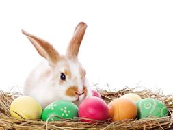 Easter Brain Teasers, Stories & Problem Solving Activities
