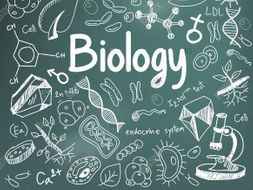 AQA B1 Cell Biology Revision