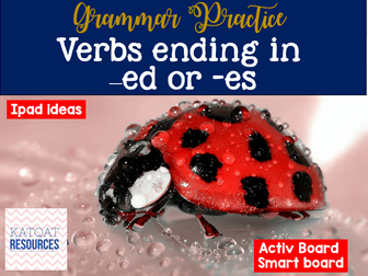 Grammar Verbs - whole lesson - changing 'y' to an 'i' and adding -ed or -es
