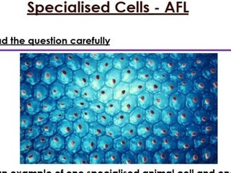 KS3 Specialised Cells 6 mark Question