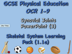 Skeletal System GCSE OCR PE (1.1a) Synovial Joints PowerPoint