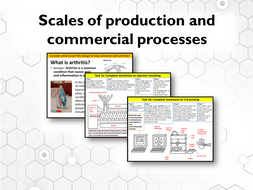 Worksheet-1.-Scales-of-production.pptx
