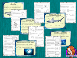sharks-lesson-plan-preview.png