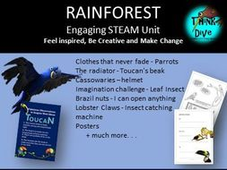 Project based learning: Rainforest, Animals, Plants - STEAM, Biomimicry, KS1, NGSS