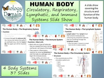 Human Body: Circulatory, Respiratory, Lymphatic, and Immune Systems Slide Show