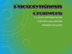 Differentiated Photosynthesis Crossword