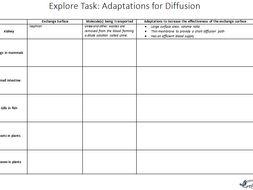 Explore Task: Adaptations for Diffusion