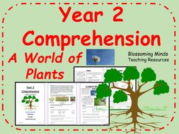 Year 2 Reading Comprehension - Plants - Science