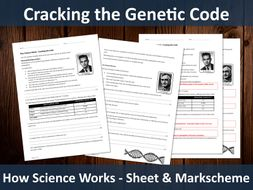 Cracking the Genetic Code (A level) - Worksheet and Markscheme
