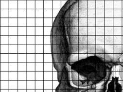 Grid Drawing Human Body Parts