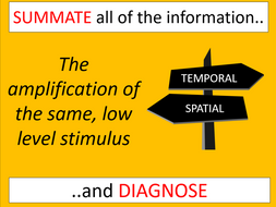 Temporal and spatial SUMMATION and inhibition (AQA A-level Biology)