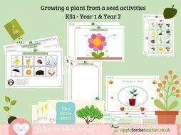 Growing a seed science topic bundle KS1 EYFS