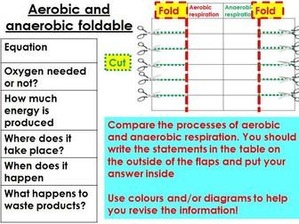 Aerobic and anaerobic respiration