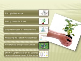 Biology for IGCSE Experiments and investigations for PLANTS – part1