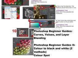 Photoshop Beginner Tutorials