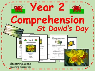 St David's Day Comprehension - Year 2
