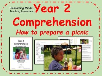 Year 2 non-fiction comprehension - How to prepare a picnic