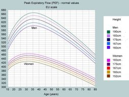 Physical Health Indicators, Body Mass Index, Peak Flow, Urine hydration and body temperature (L2)