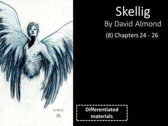 KS3: Skellig (8) Chapters 24 to 26