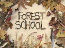 Forest School starting up mega bundle