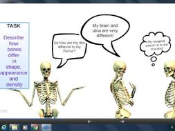 OCR GCSE PE Skeletal system unit of work. Lesson Resources and Assessments