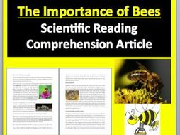 The Importance of Bees Comprehension Reading KS3 and KS4