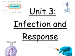 Unit 3: Infection and Response revision booklet