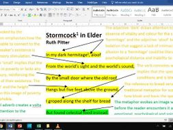 Stormcock in Elder - Fully Annotated Poem CIE