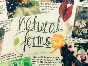 Natural Forms Art worksheets