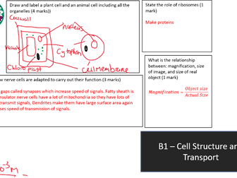 AQA GCSE 9-1 B1 Cell Structure and Transport Revision Mat