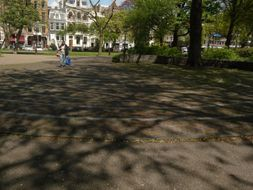 Trees, Plants & Nature of the City Amsterdam,  in pictures and photos - free photos of Urban Green
