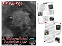 Differentiated Nonfiction Unit: Binturongs