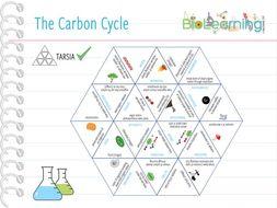 Carbon Cycle - Tarsia (KS4/5)